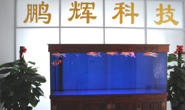 PengHui Electronics Company